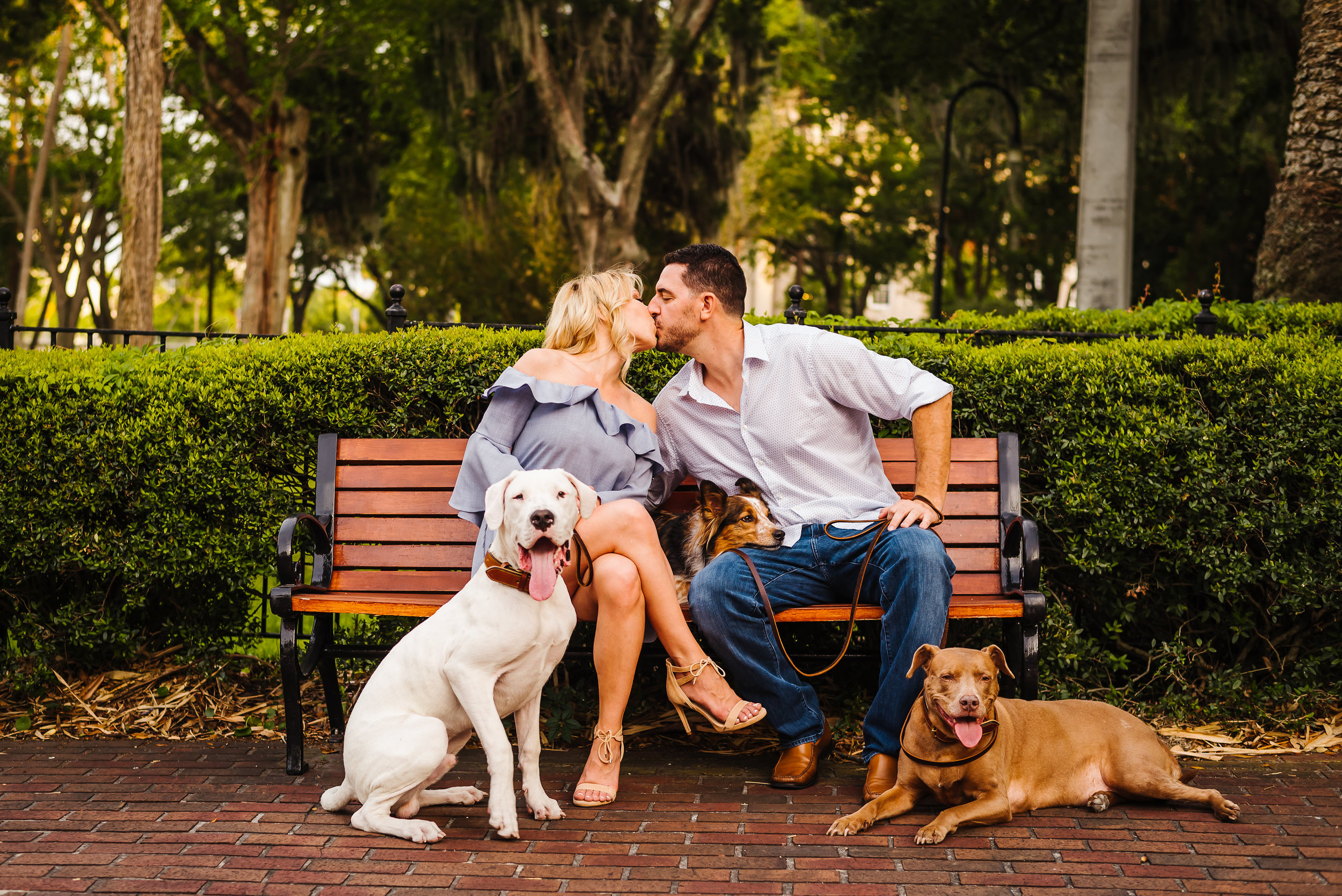 Tampa-Engagement-Photographer-University-of-Tampa-Dogs-.jpg
