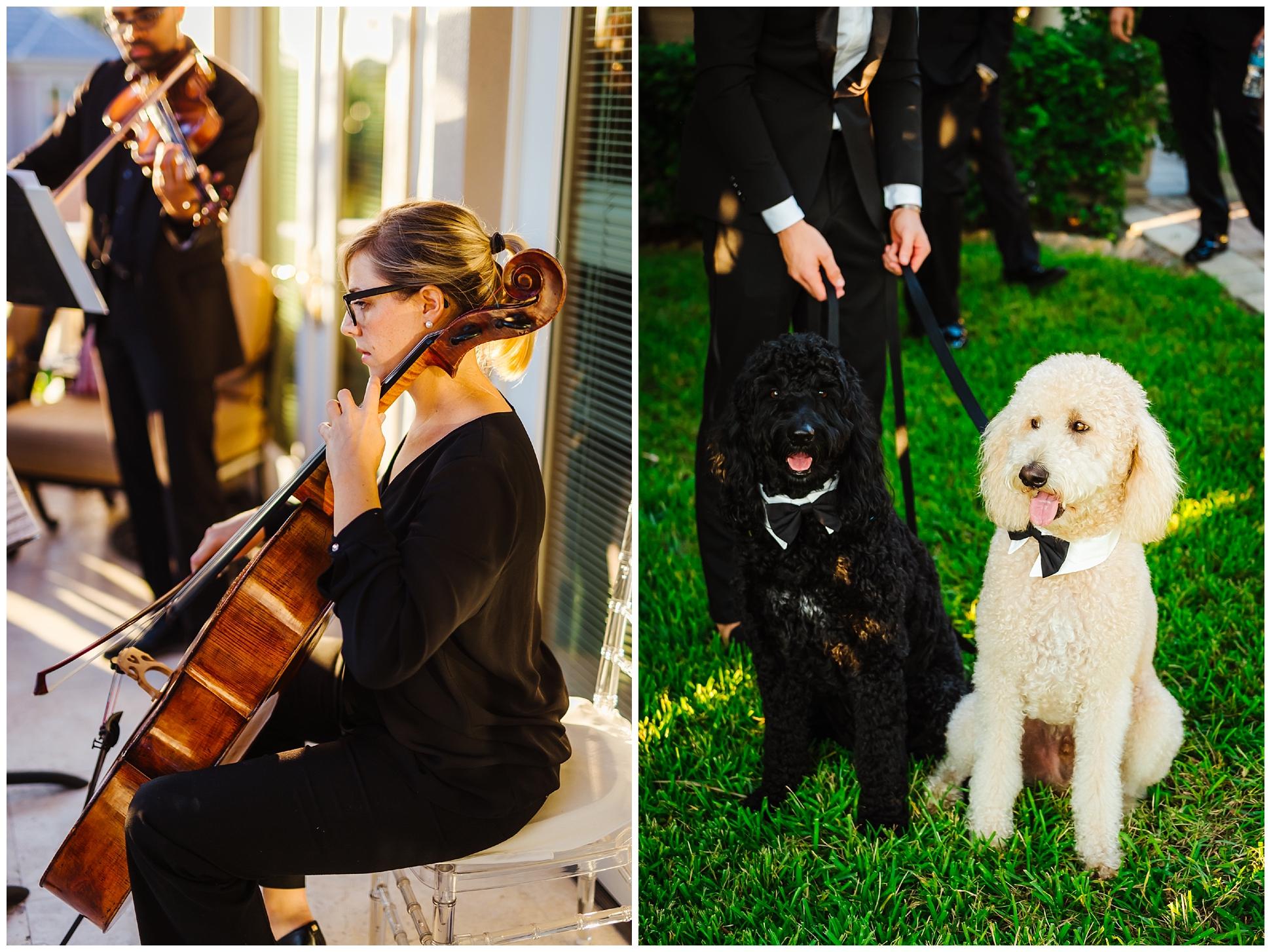 st-pete-wedding-photographer-backyard-luxury-snell-isle-vinoy_0032.jpg