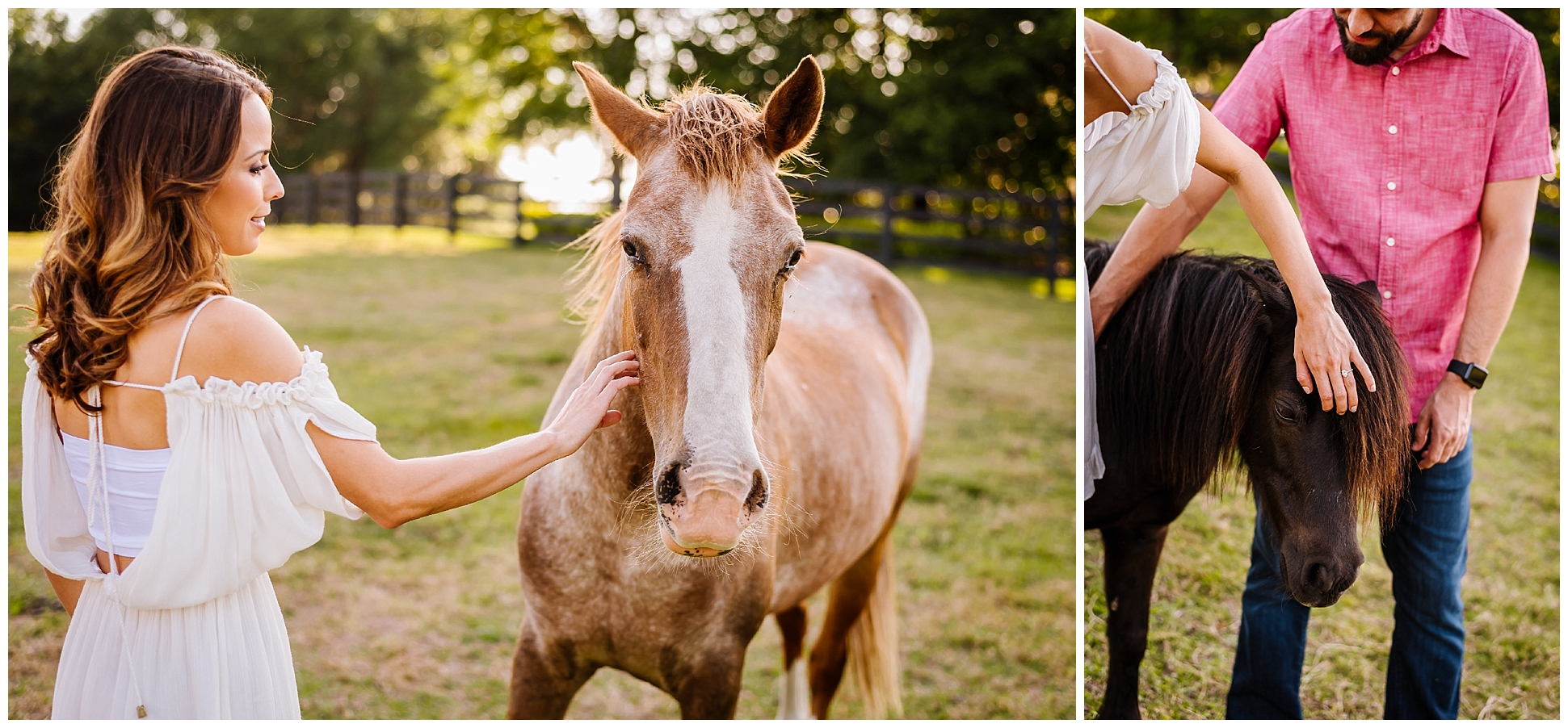 Tampa-sunset-horse-engagement session_0034.jpg