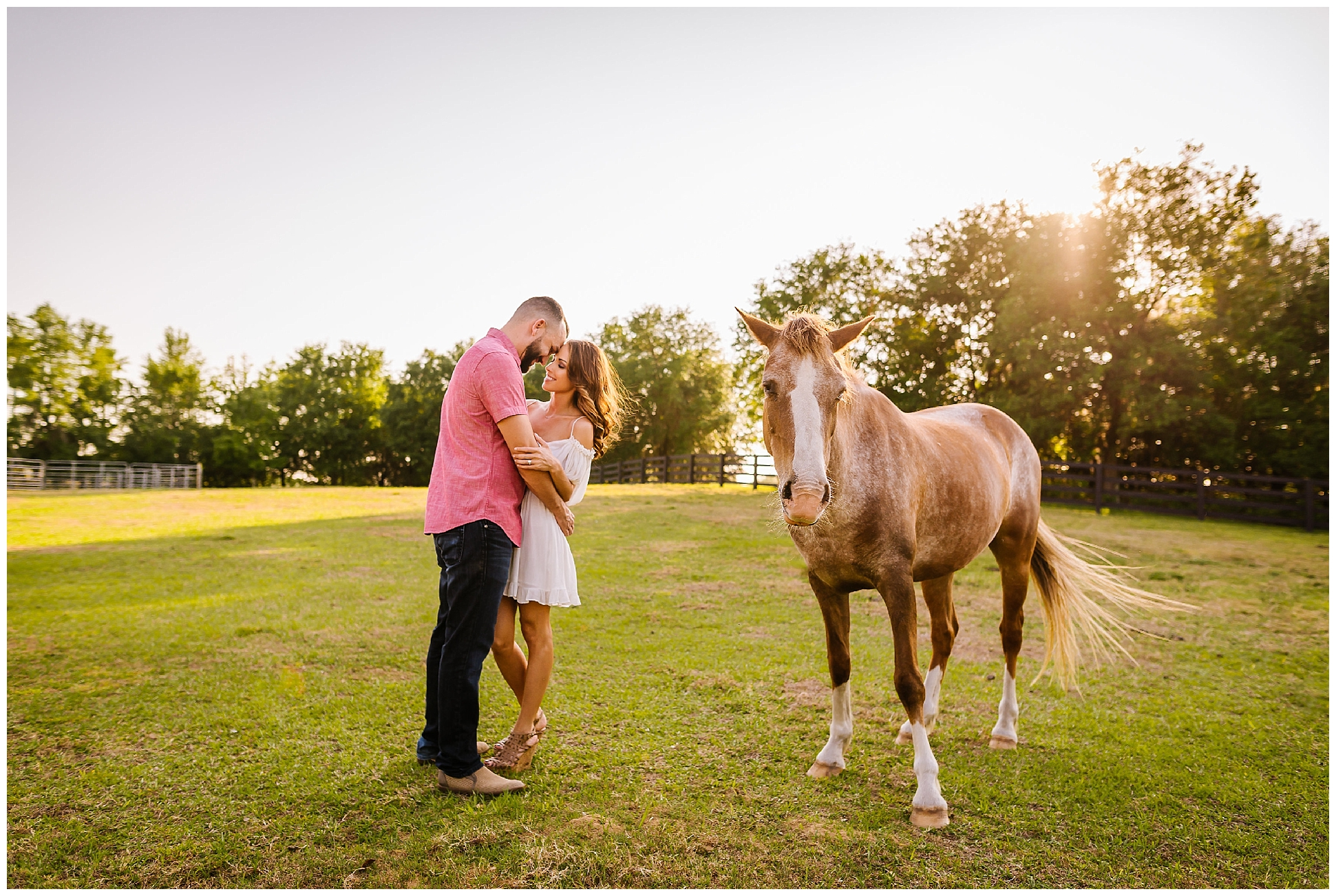 Tampa-sunset-horse-engagement session_0039.jpg