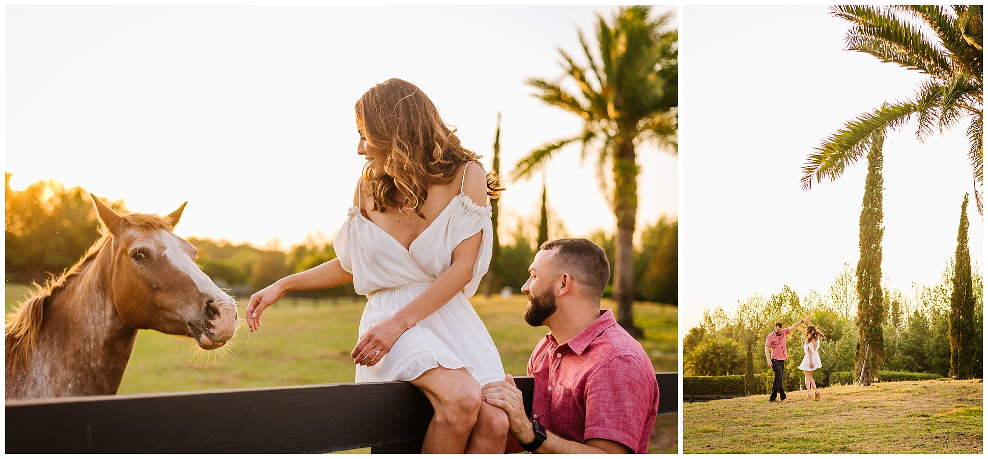 Tampa-sunset-horse-engagement session_0065.jpg