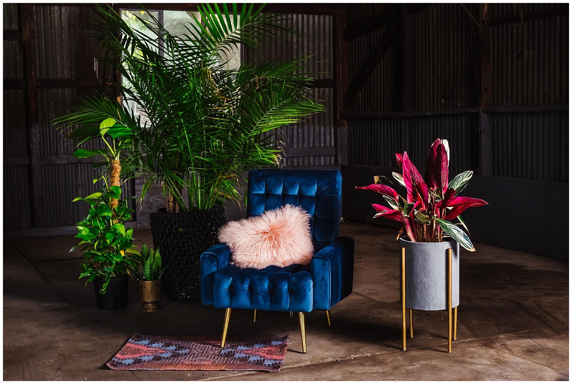 sophisticated-fun-colorful-interior design-headshots-inspiration_0057.jpg