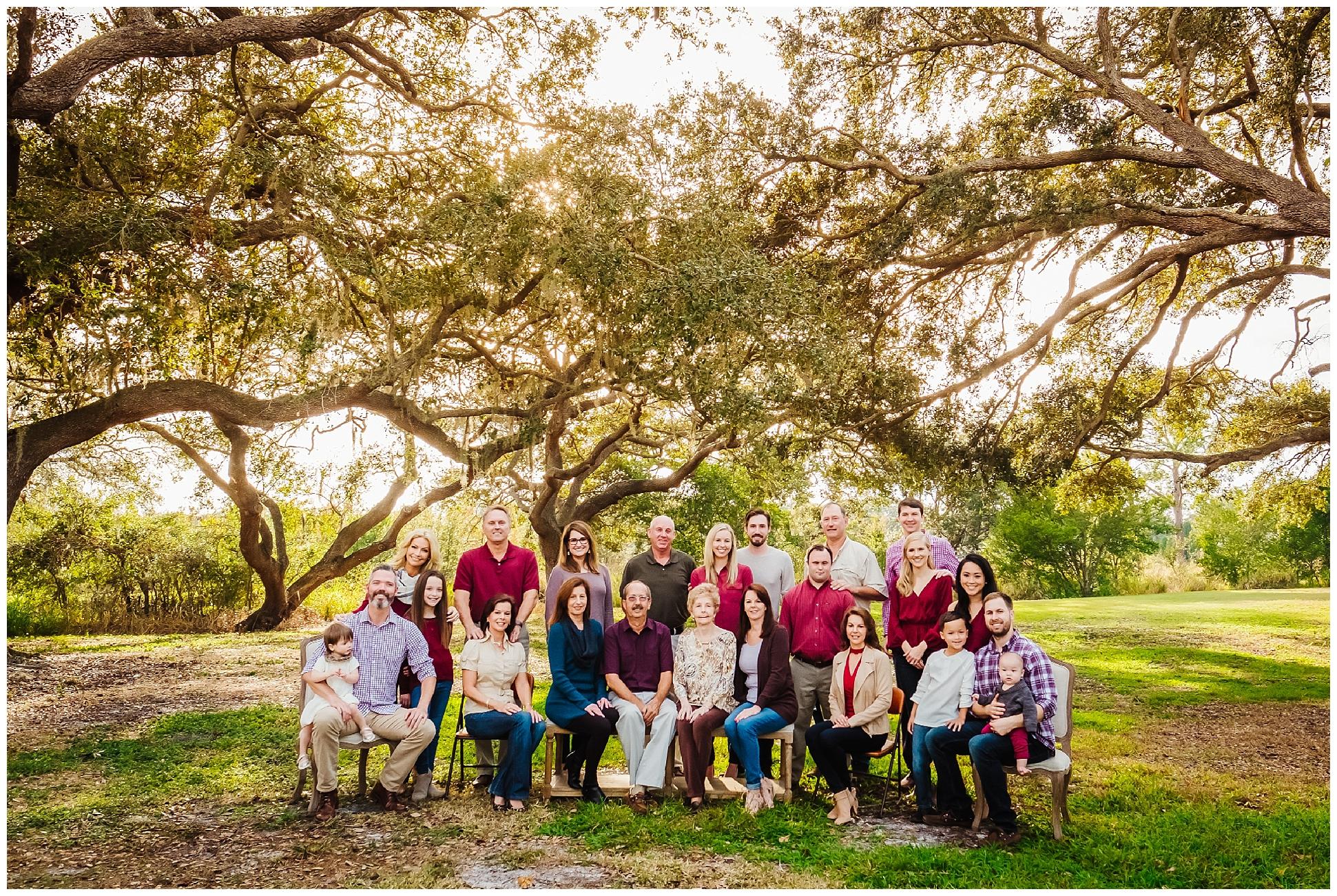 tampa-oak tree-park-holiday-gender reveal-family session_0001.jpg