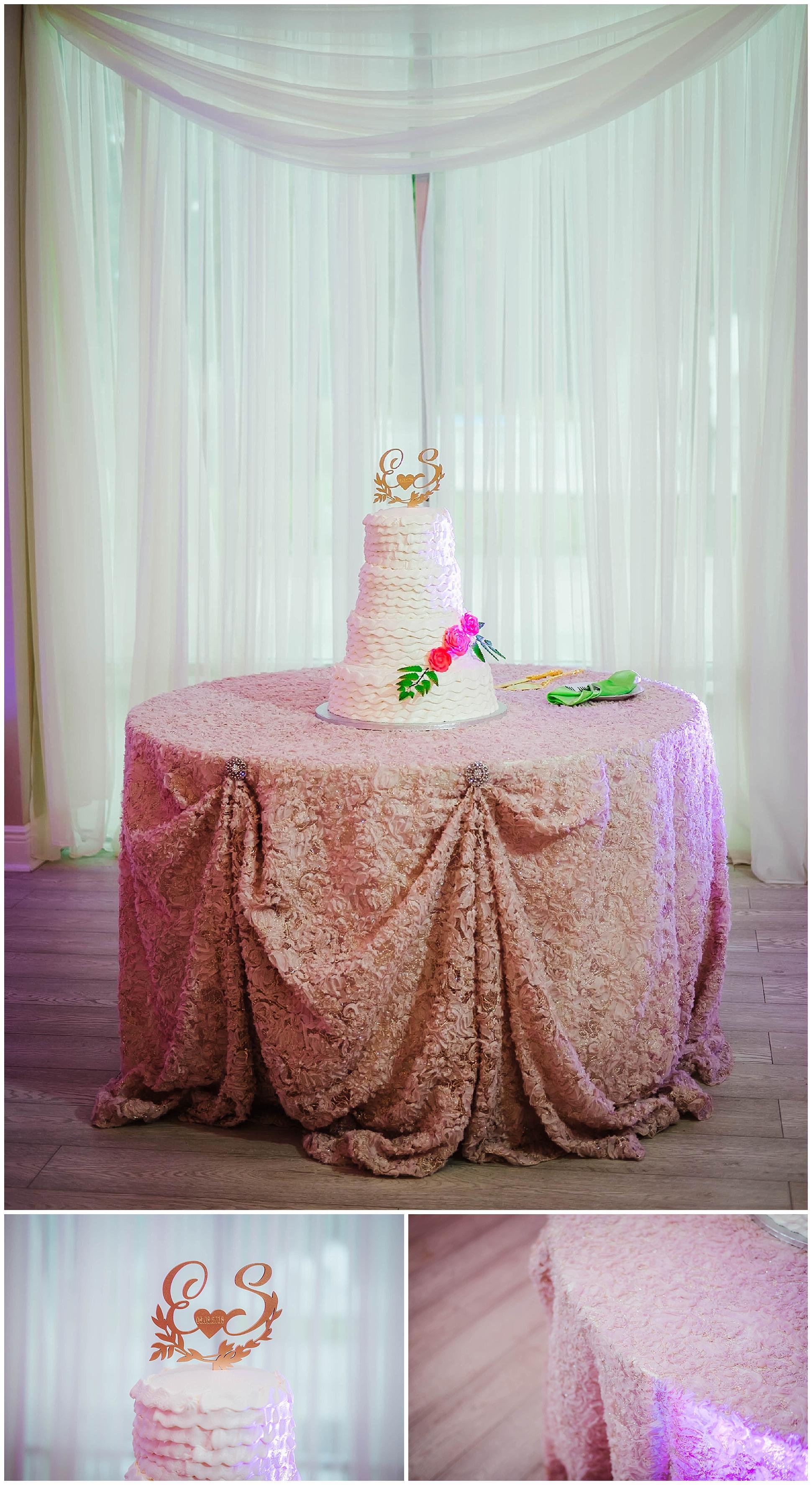 st-pete-wedding-photographer-sunken-gardens-crystal-ballroom-princess-dancer_0179.jpg