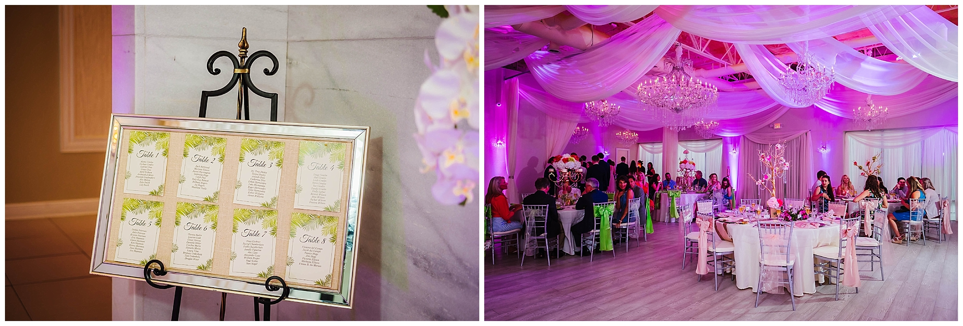 st-pete-wedding-photographer-sunken-gardens-crystal-ballroom-princess-dancer_0183.jpg