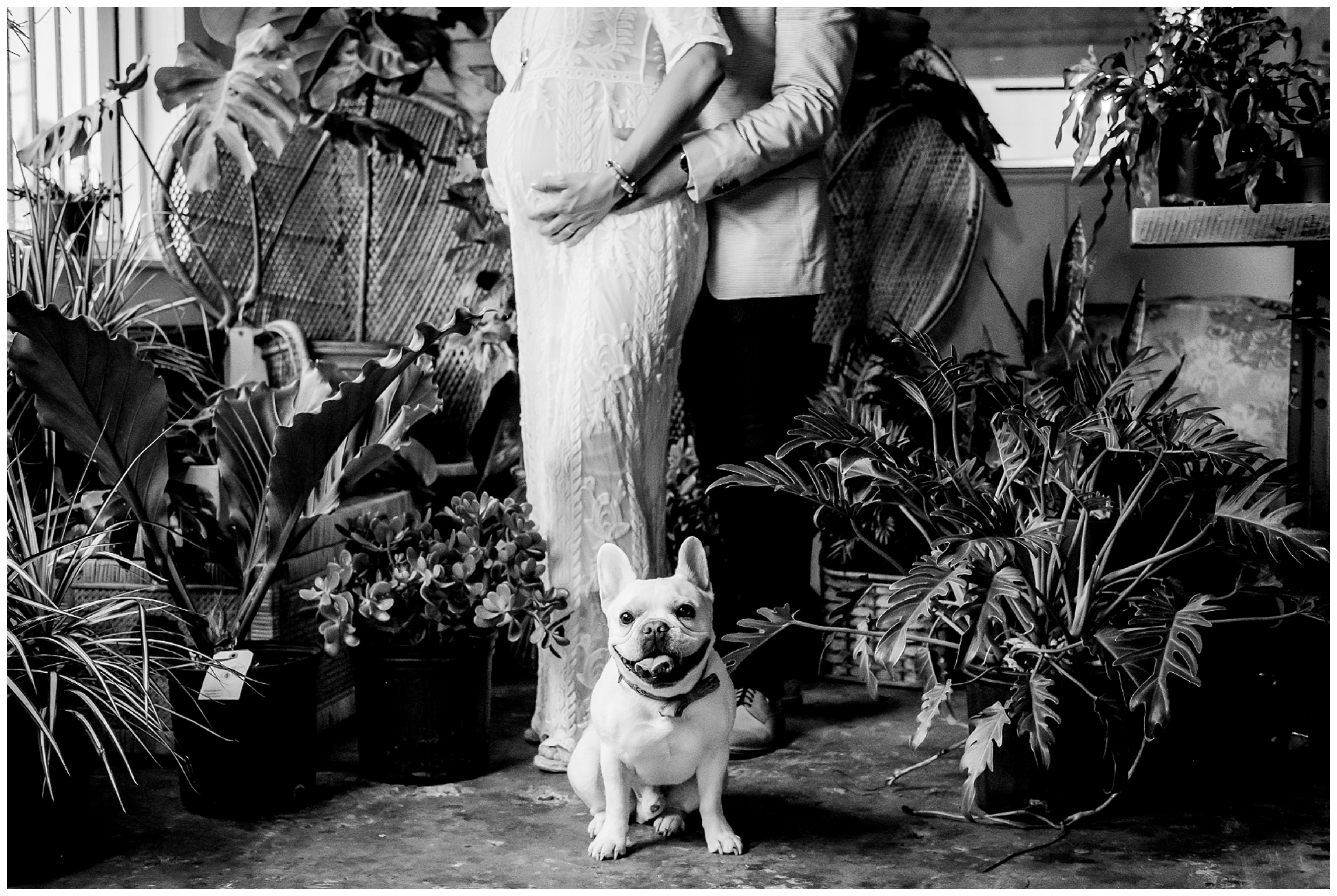 fancy-free-nursery-maternity-portraits-rainy-french-bulldog-boho-photographer-tampa_0042.jpg