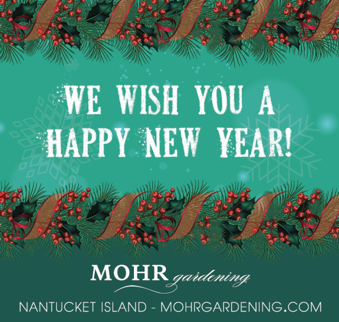MG_Happy_New_Year.jpg