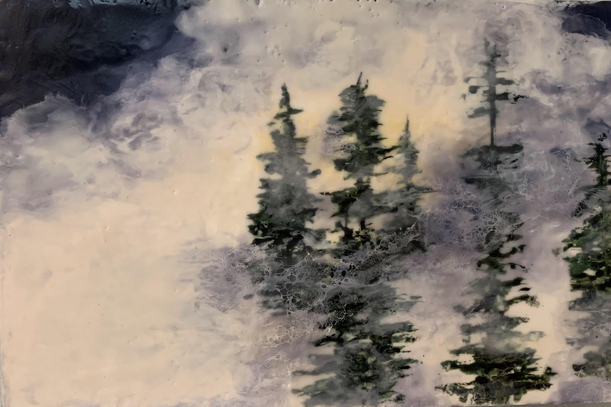 Field of Silence   18x12