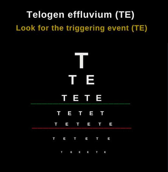 TE-triggering.png