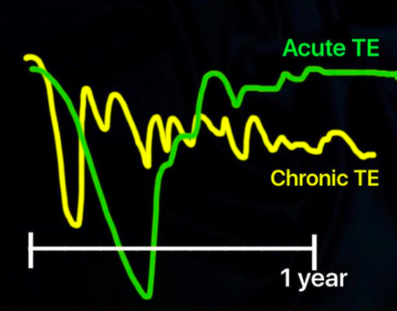 Comparison of Hair Density Over TIme in Patients with Chronic Telogen Effluvium vs Acute Telogen Effluvium. In CTE, the hair drops to a new density and then remains at that density for many, many years. in acute TE, the hair grow back once the trigger is identified.