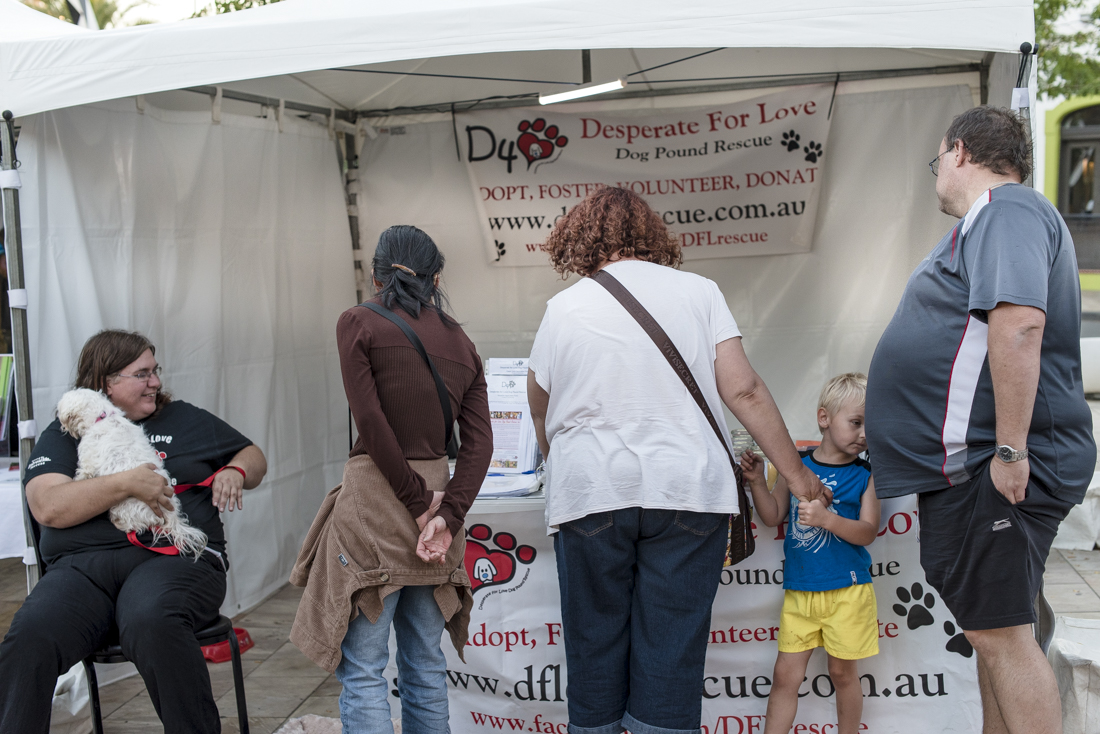 Web_The Good Dog Festival-5797-31.jpg