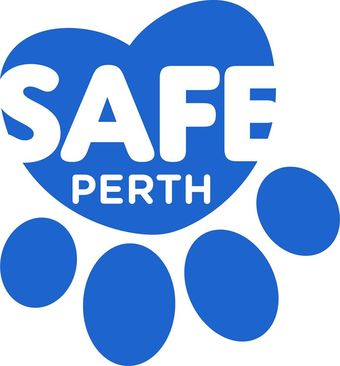 large_SAFE-logo.jpg