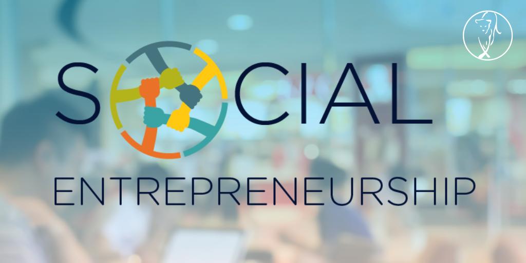 Segue into Social Entrepreneurship — Lionesses of Africa