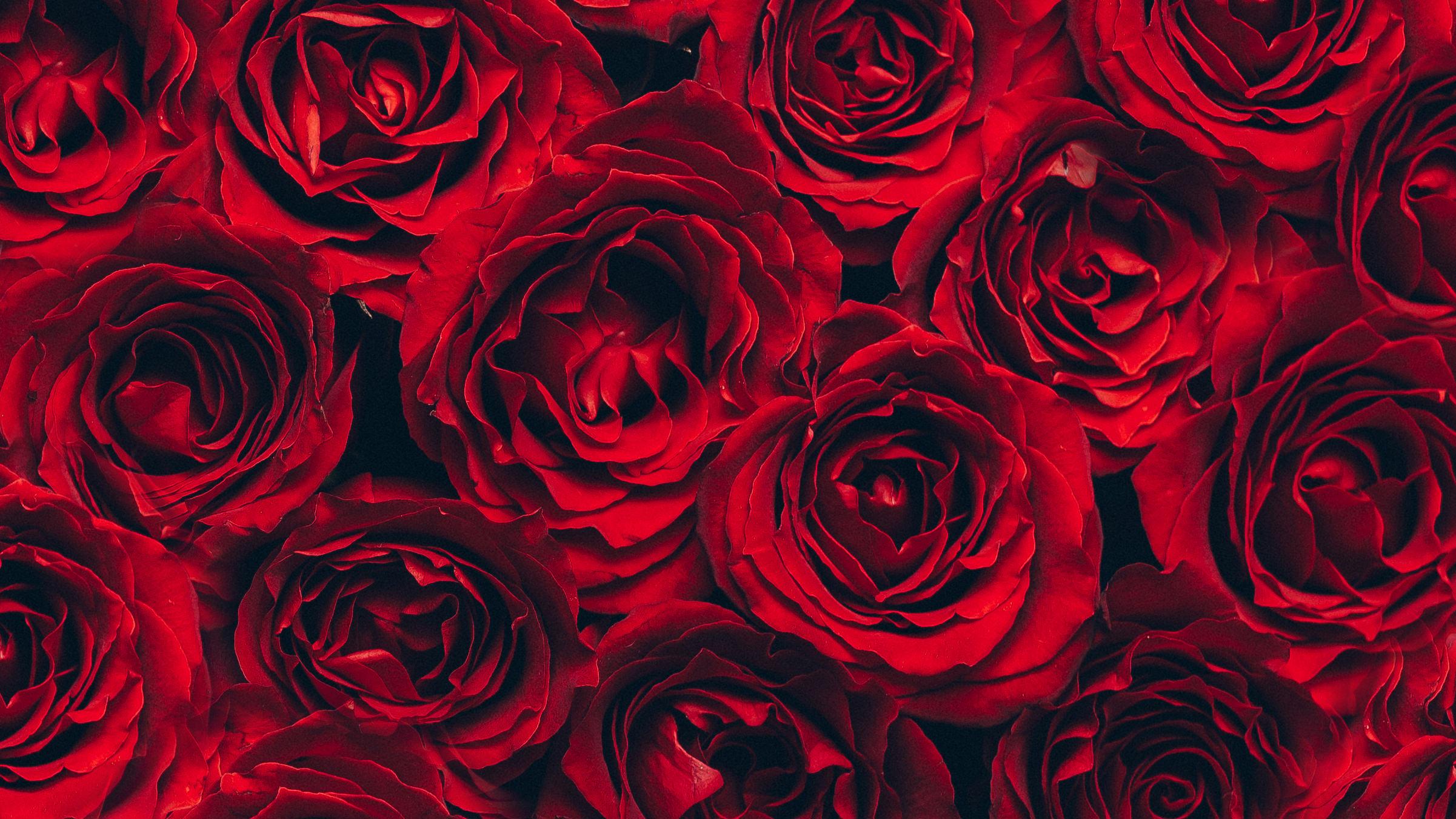 FlowersOnTheGo-byLM08-1.jpg