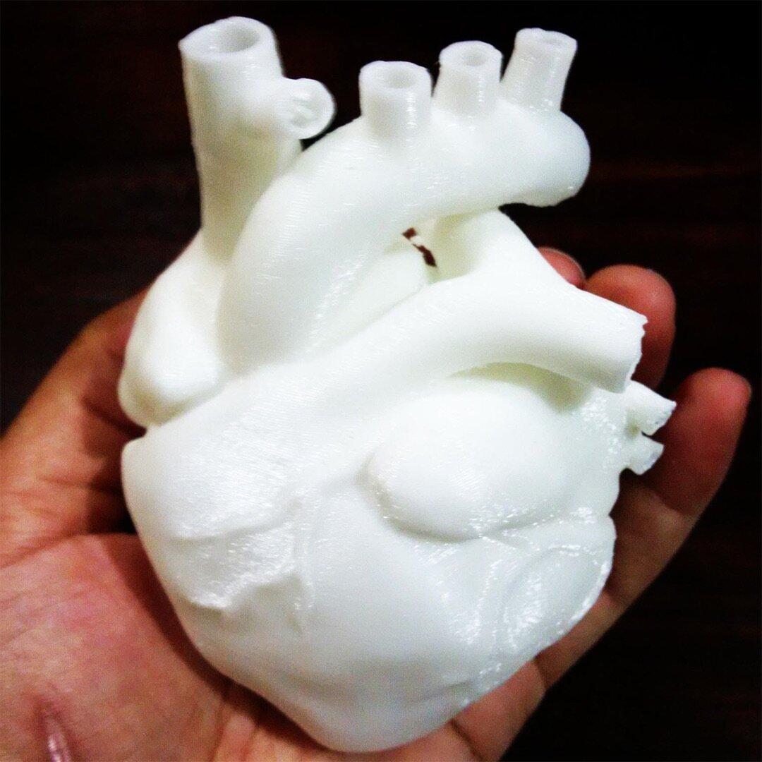 Coração humano 1600mts.jpg