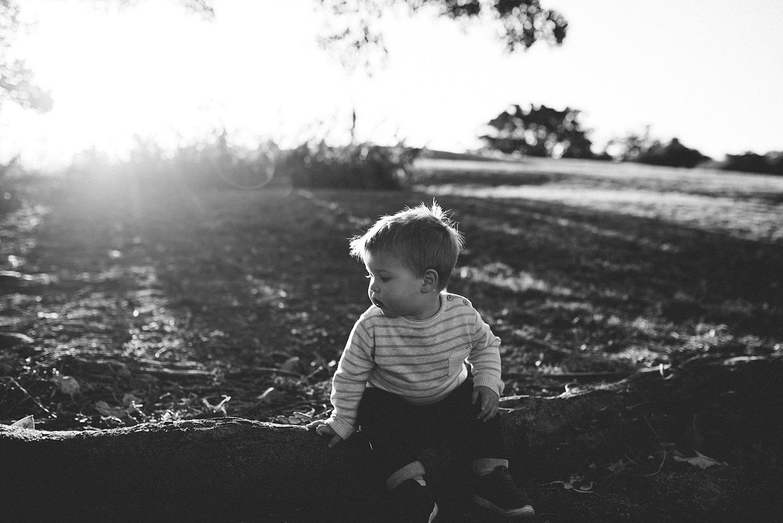 Sydney_Family_Baby_Children_Photographer_0297.jpg