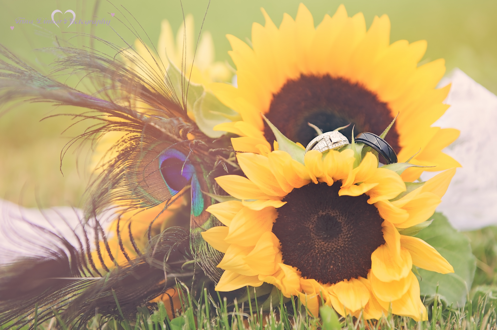 wedding rings in a sunflower bouquet