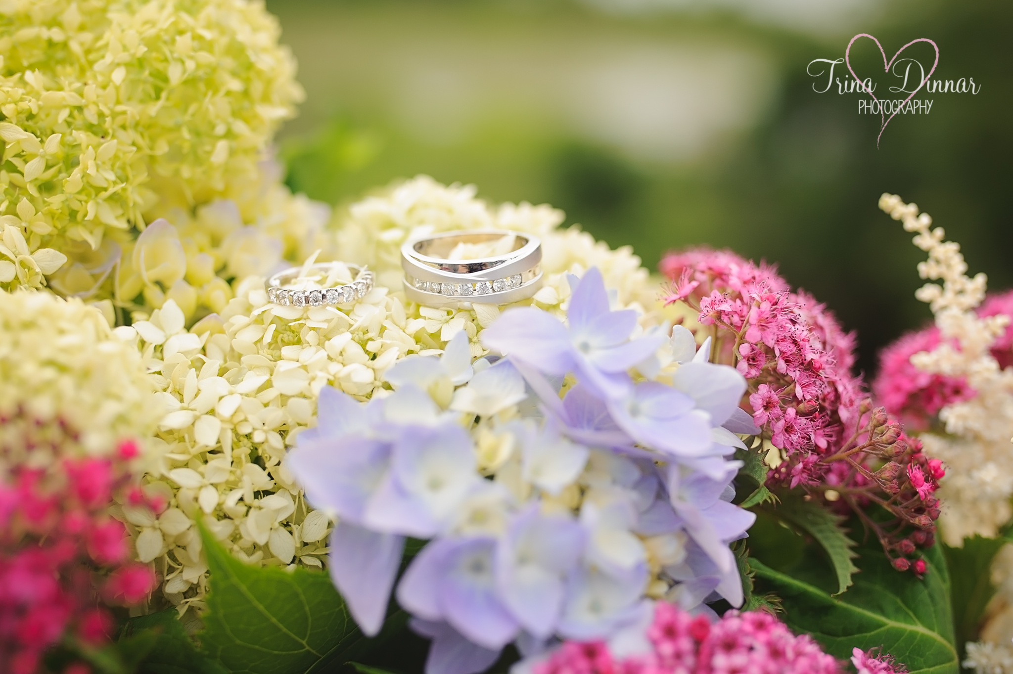 Weddings Rings and flowers from Sage Floral Studio in MA