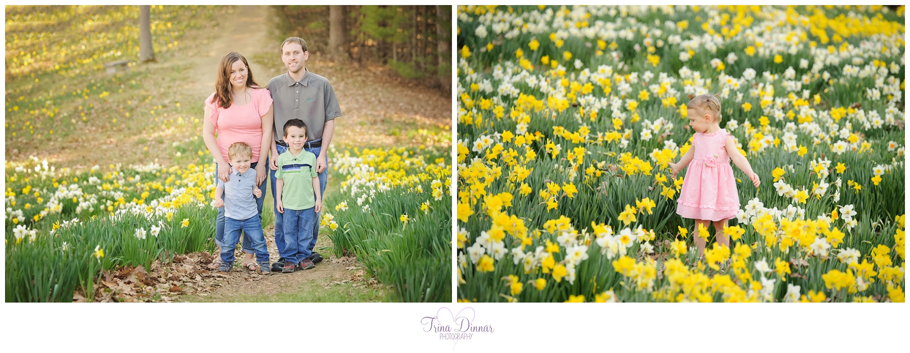 daffodil portrait sessions