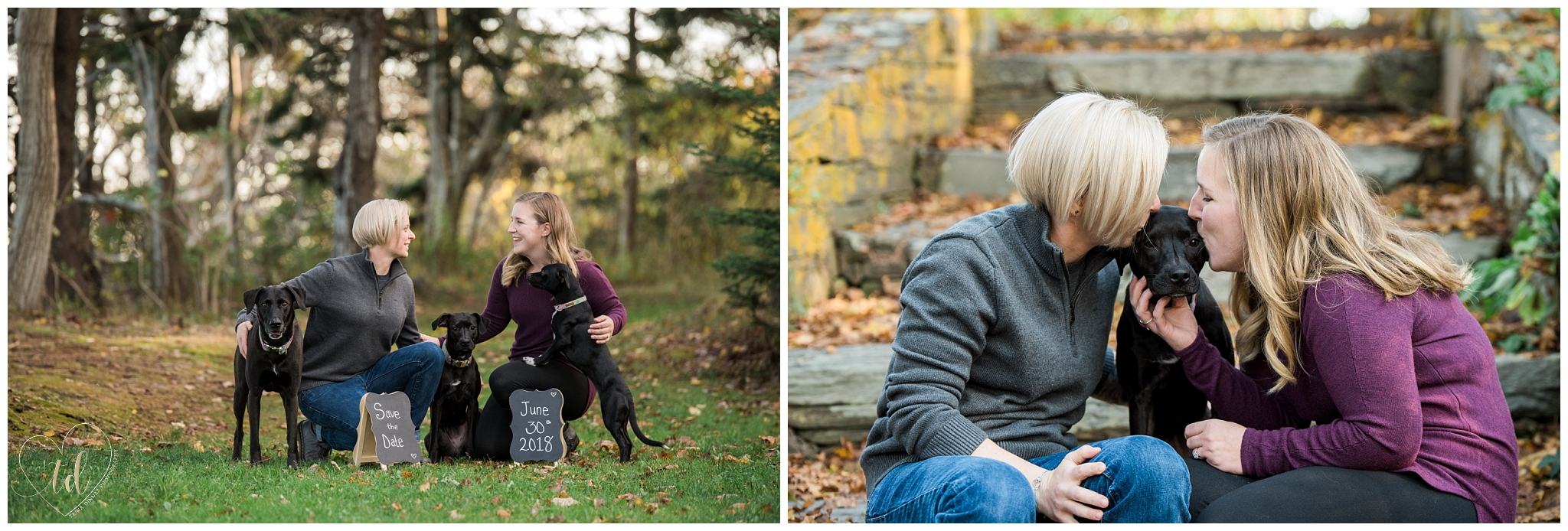 Emily and Kim with their dogs during a Maine photography session for their save the date.