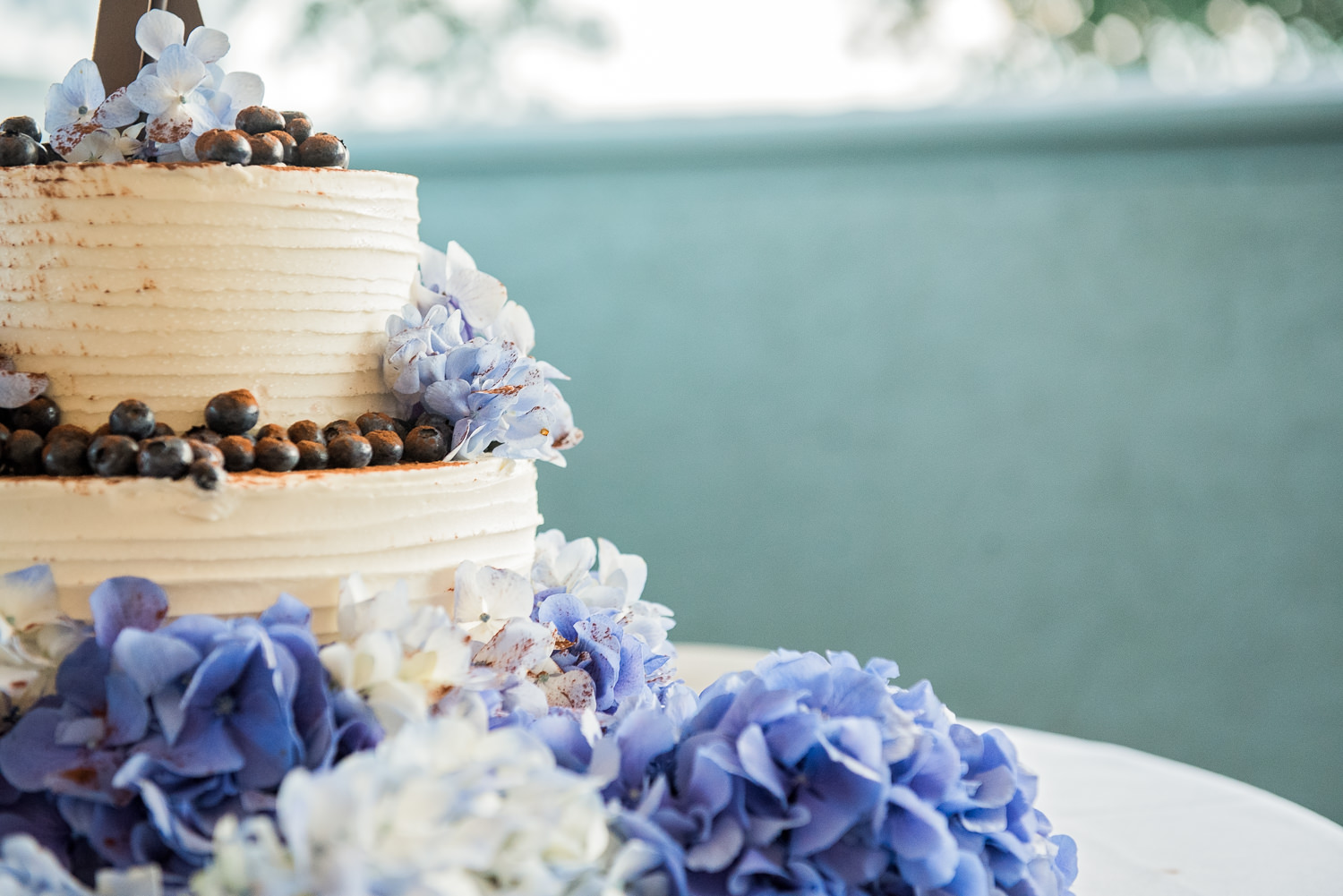 Point Lookout Northport ME Wedding