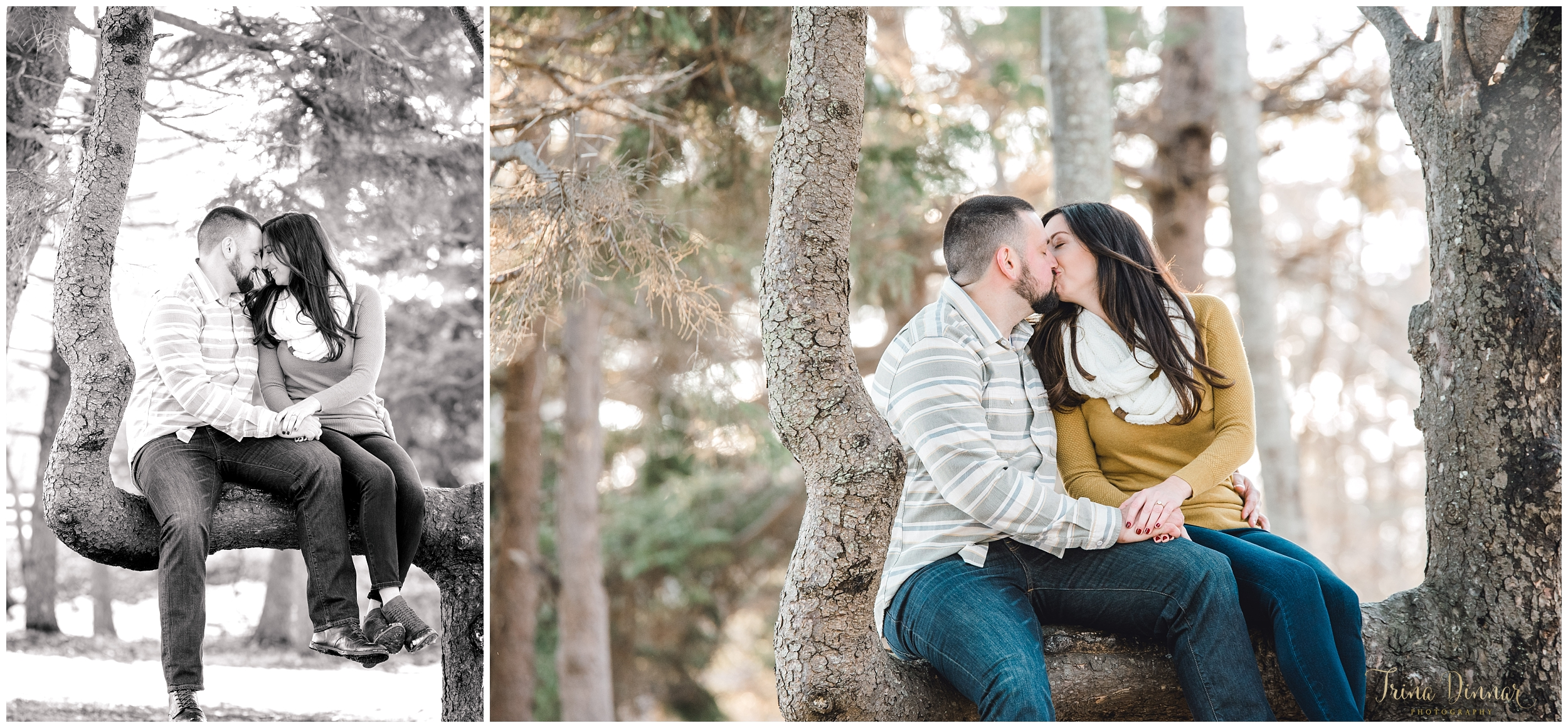 Couple Kiss during their Portrait Photo session in Maine