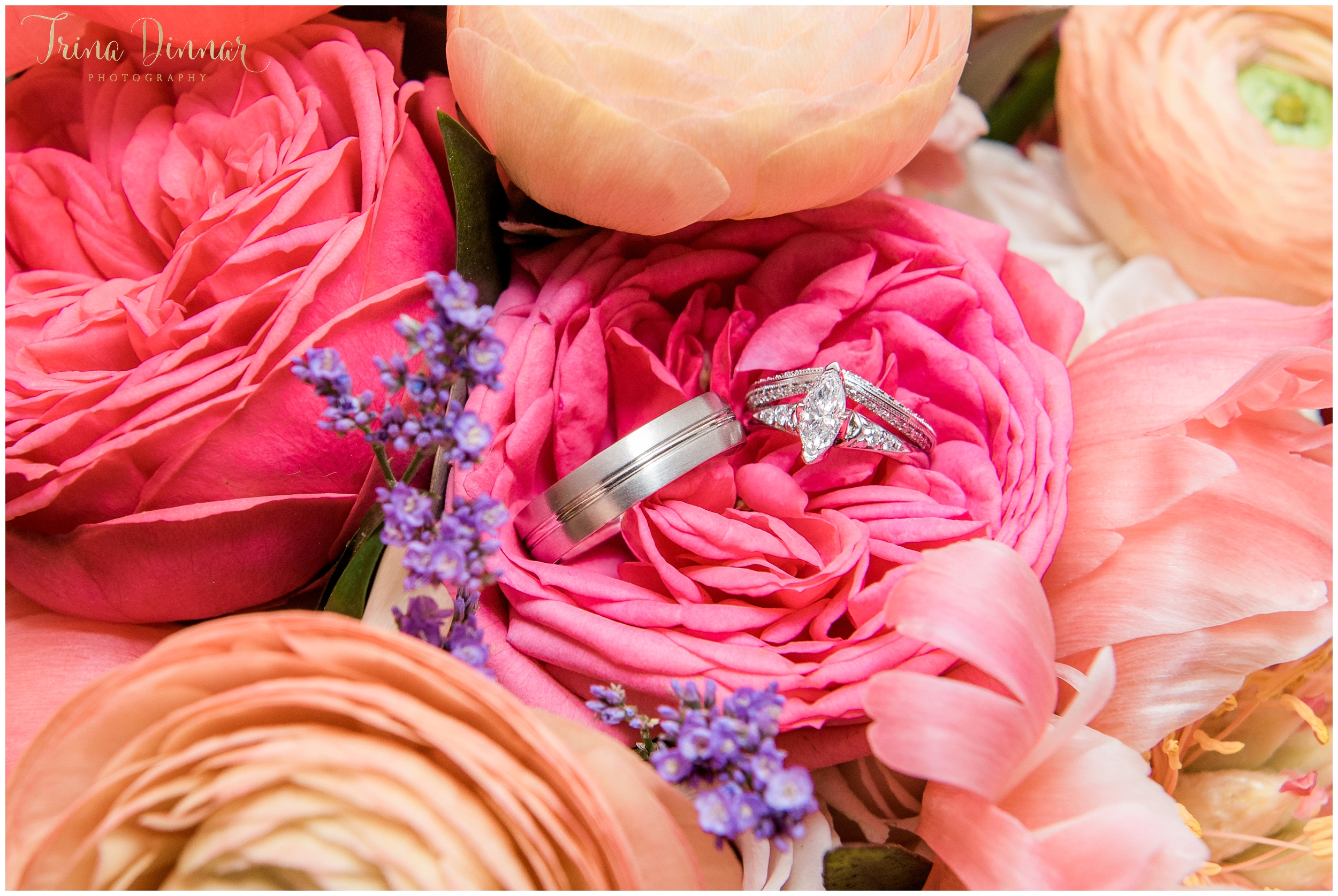 Maine Wedding Rings in Studio Flora Bridal Bouquet