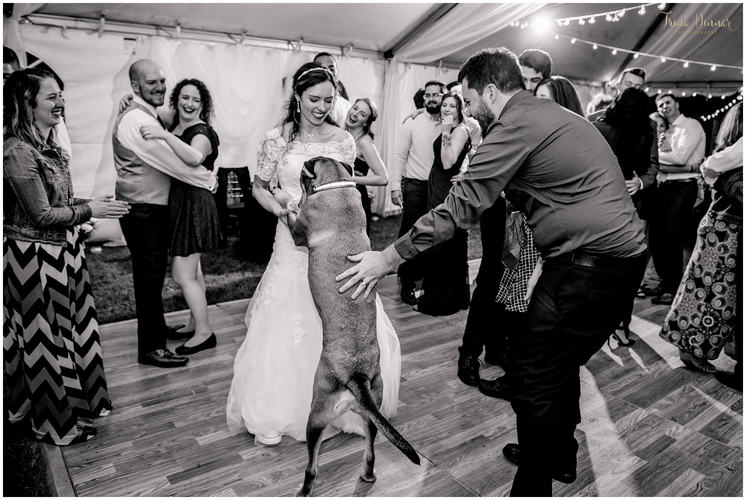 Maine Bride Dancing with her Dog at Wedding