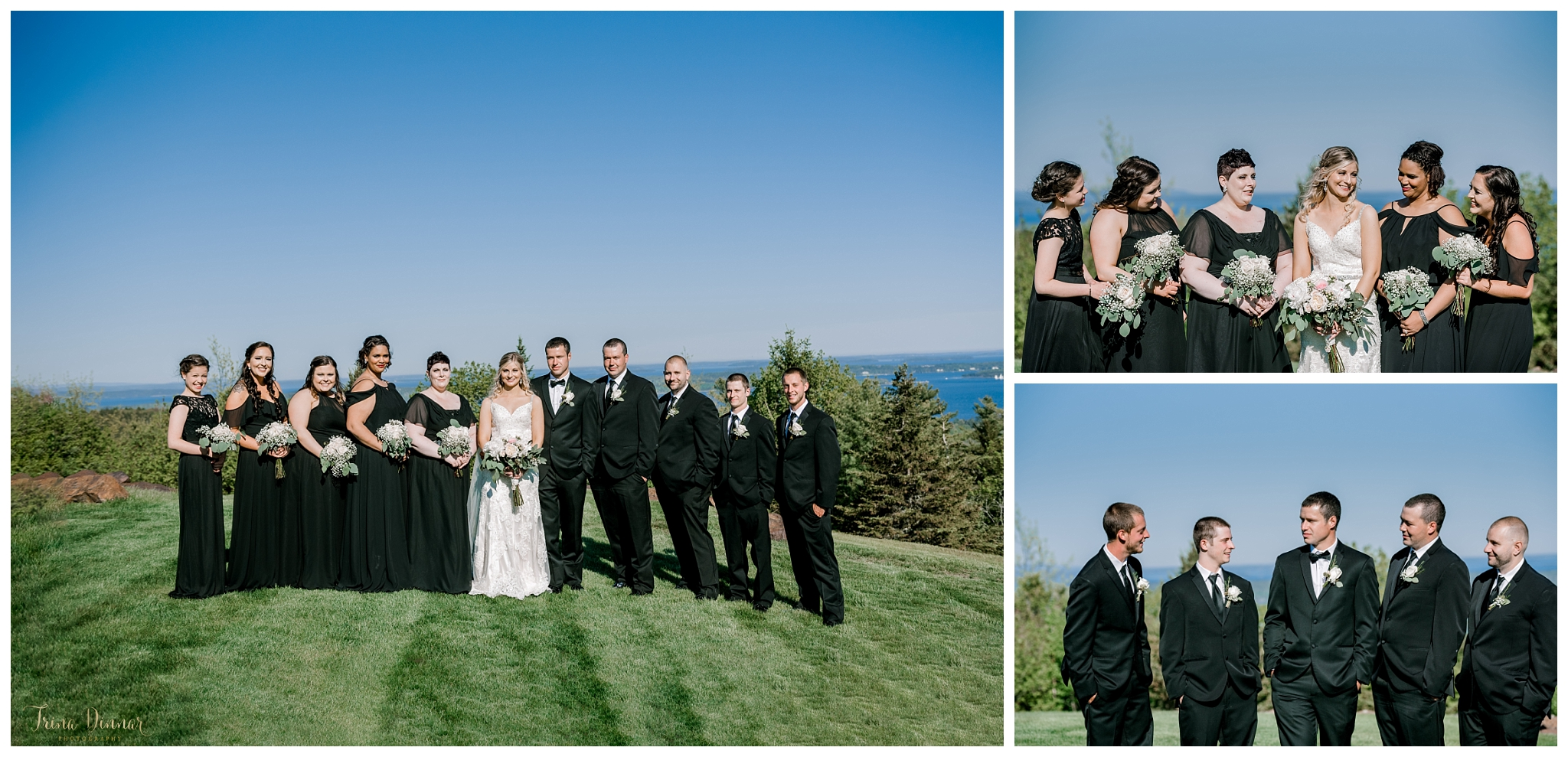 Wedding Party Formal Portraits