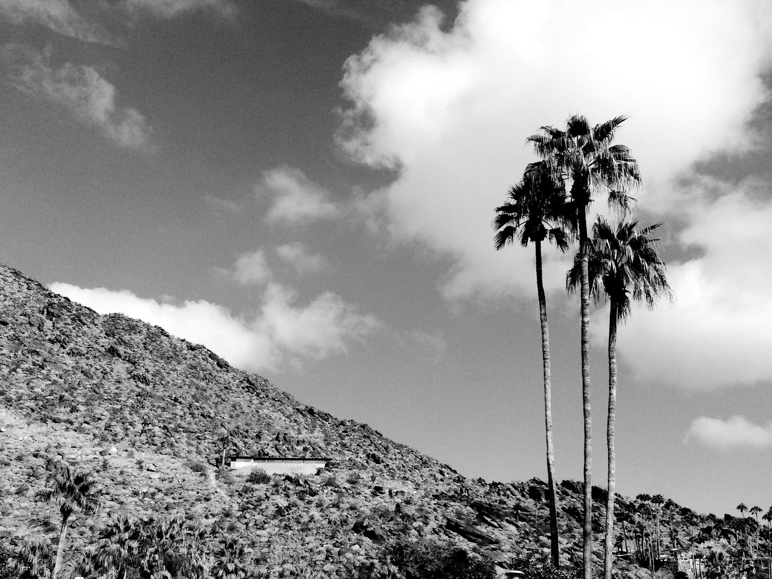 palm springs black and white architecture.jpg