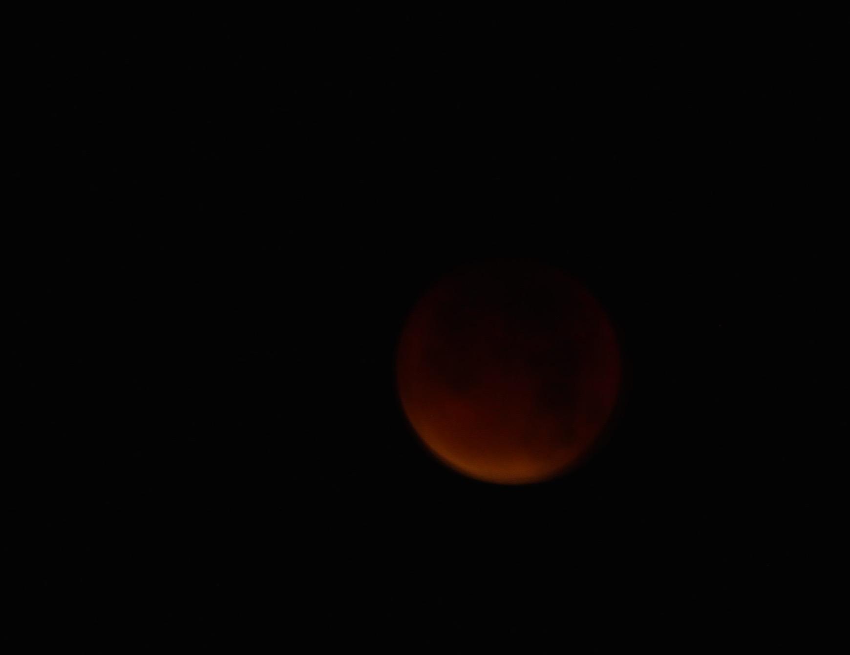 supermoon eclipse emma leafe 2015_red.jpg