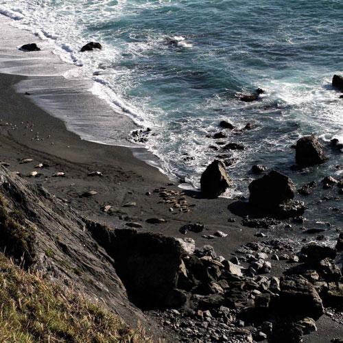 big-sur-california-beach-seals-web-sml.jpg