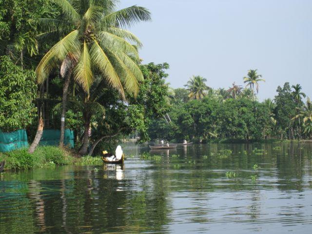 Kerala boats.jpg