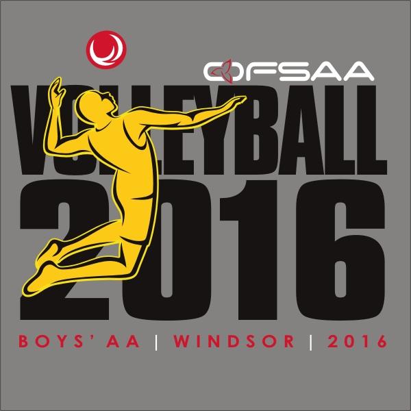 2016 Boys AA Volleyball logo grey.jpg