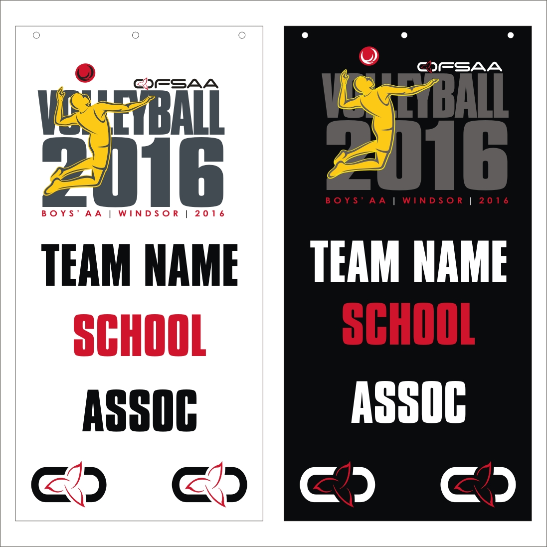 2016 Boys AA Volleyball  banner small.jpg