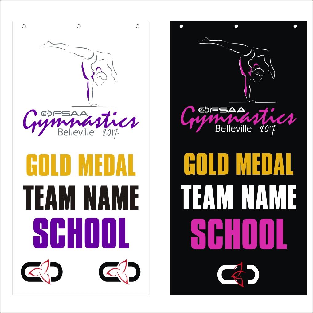 2017 Gymnastics banner.jpg
