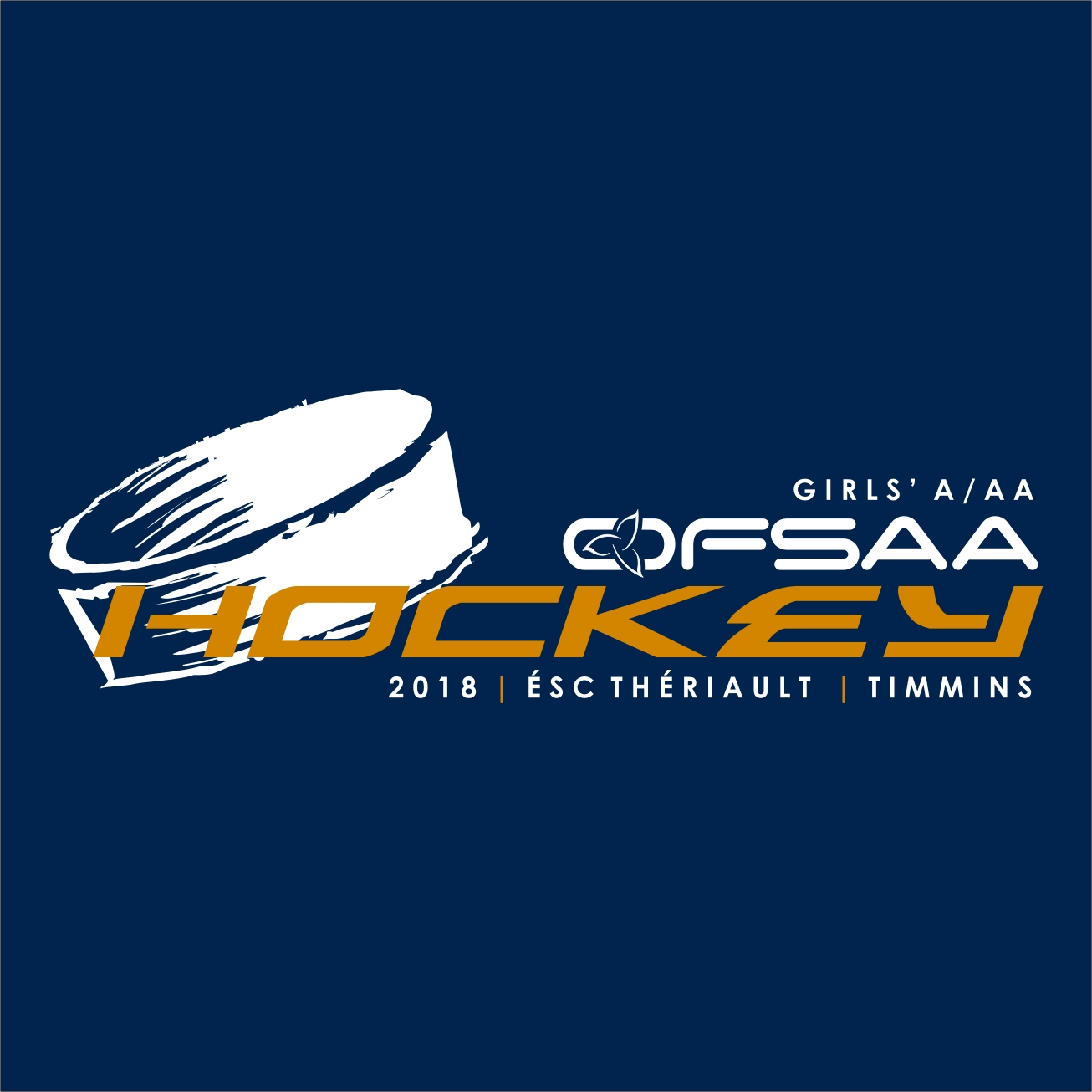 2018 Girls A AA Hockey logo blue.jpg