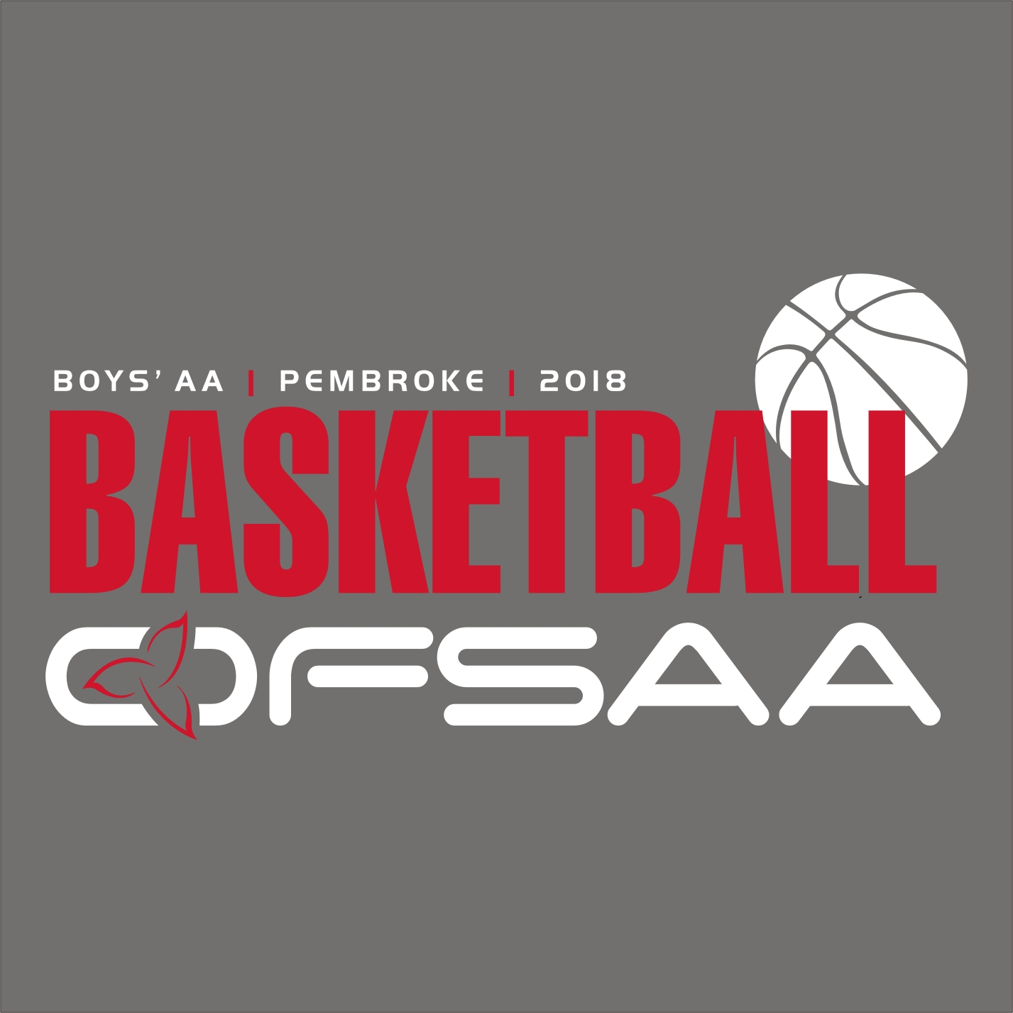 2018 Boys AA Basketball Logo grey.jpg
