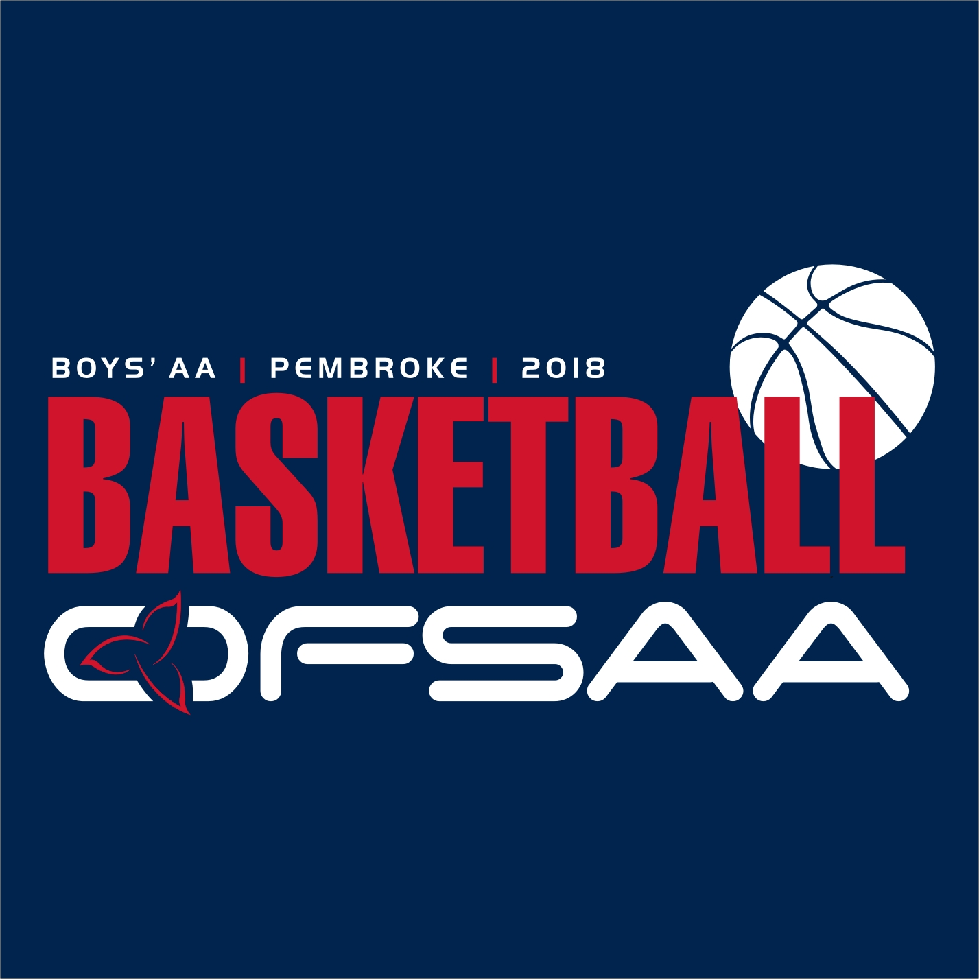2018 Boys AA Basketball Logo Blue.jpg