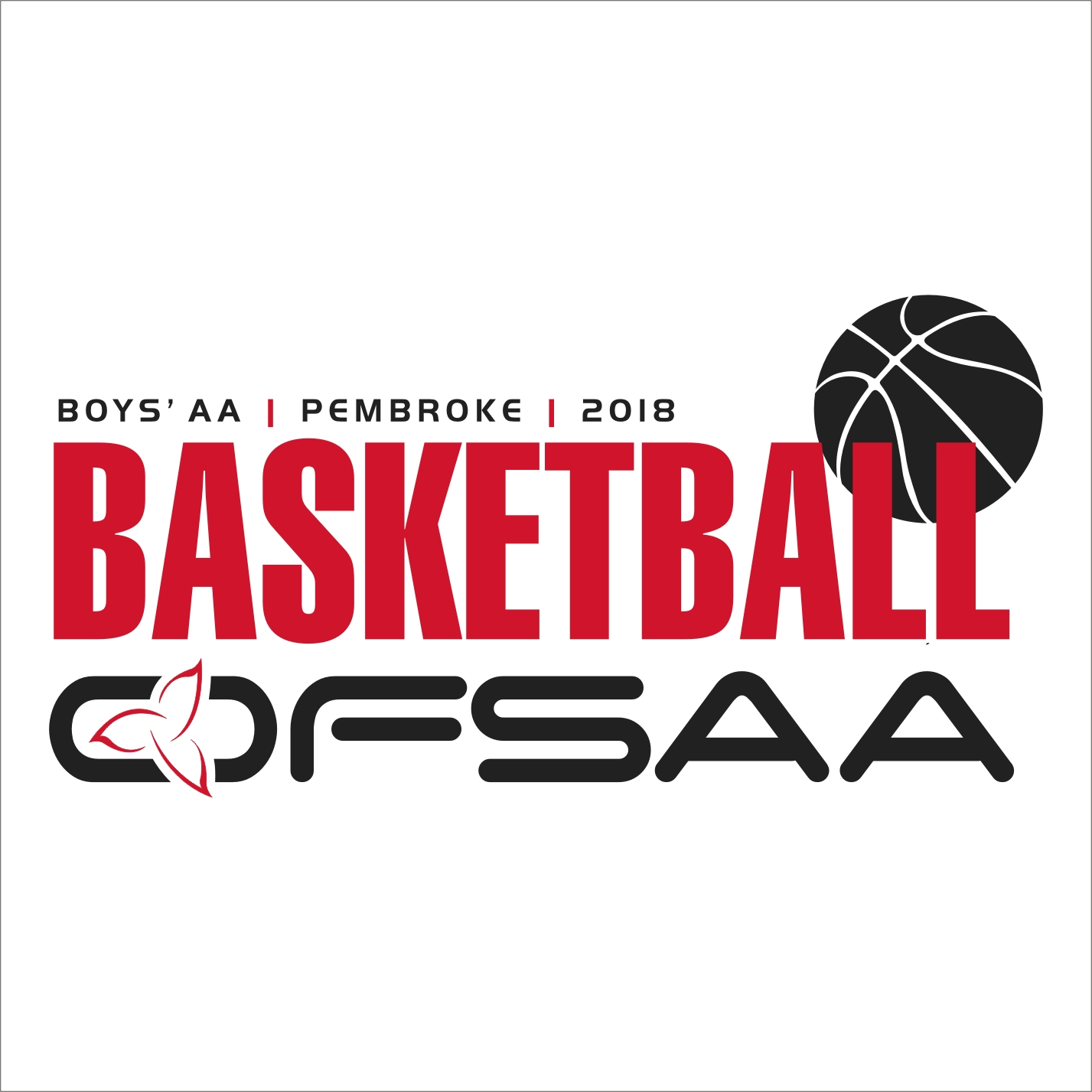 2018 Boys AA Basketball Logo white.jpg