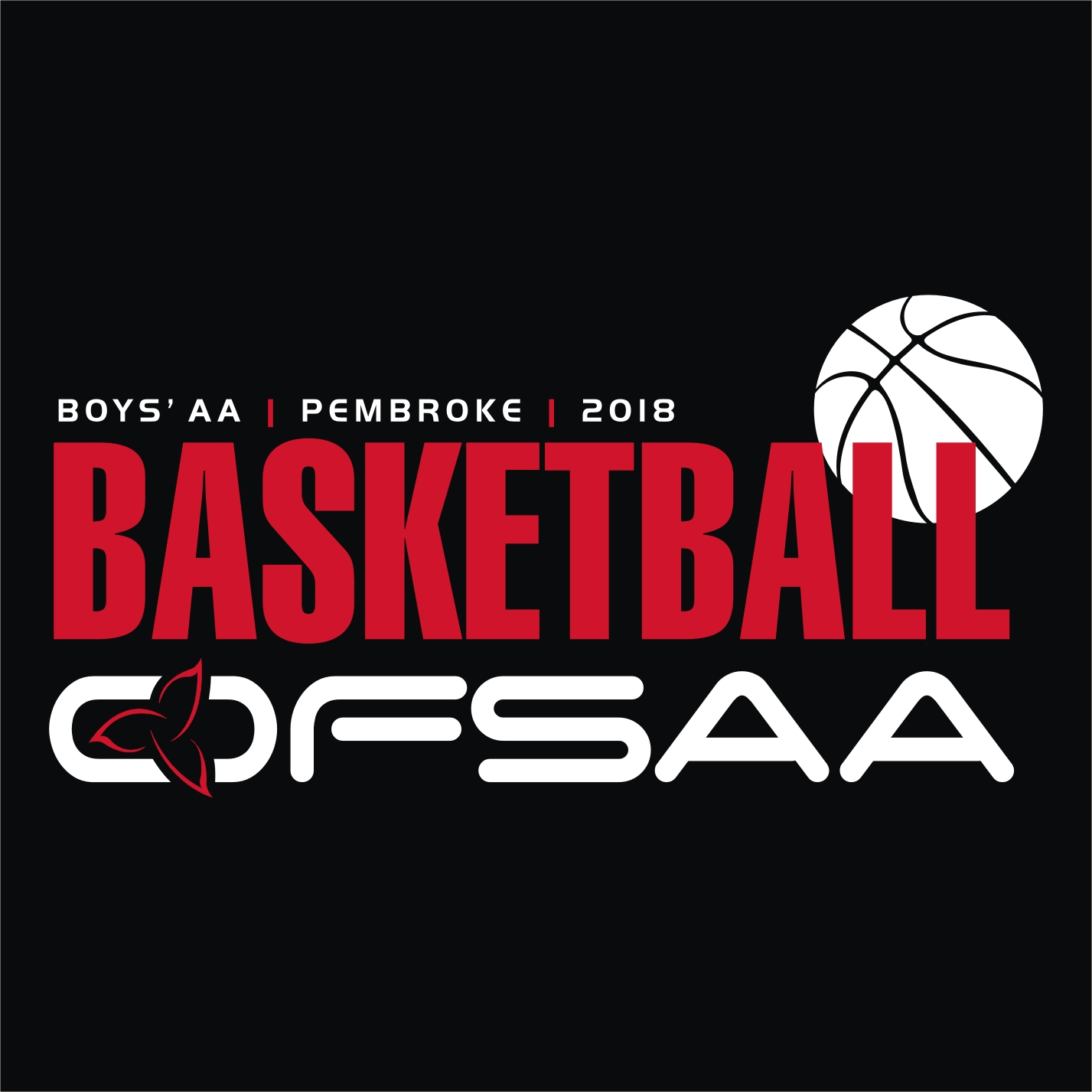 2018 Boys AA Basketball Logo Black.jpg