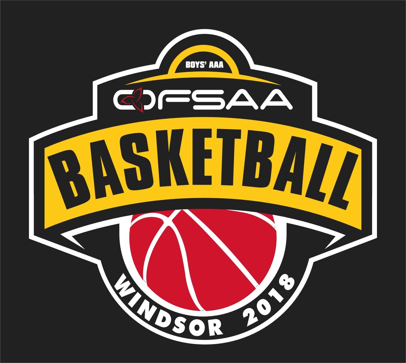 2018 Boys AAA Basketball logo black.jpg
