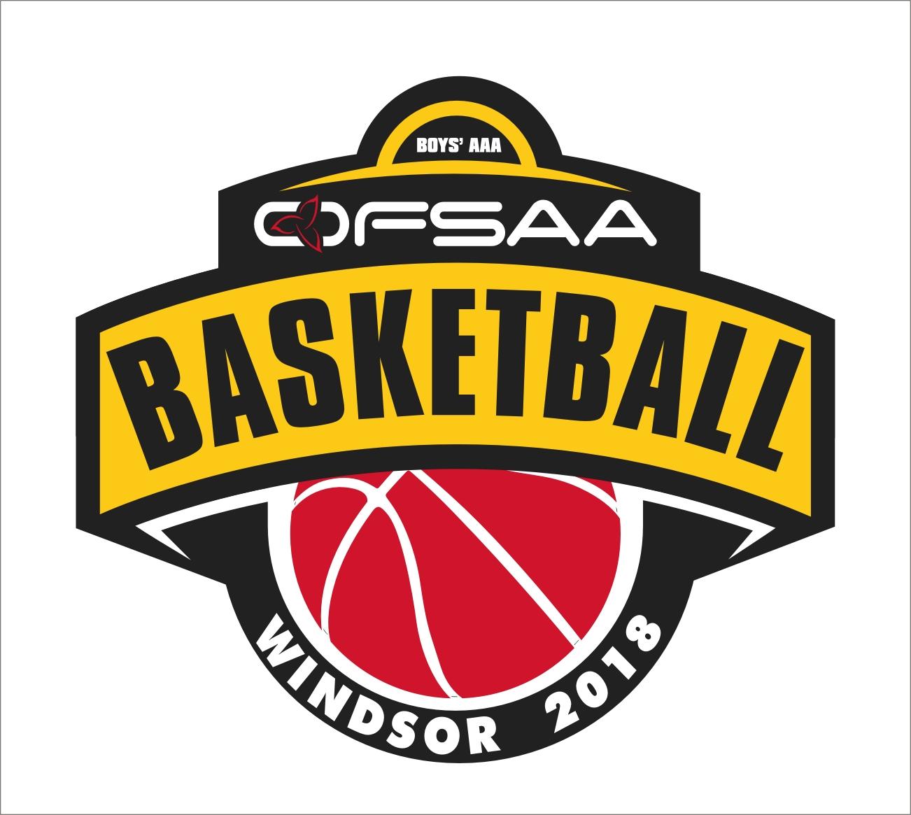 2018 Boys AAA Basketball logo white.jpg