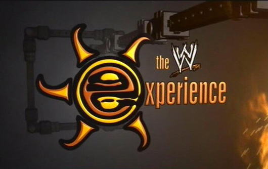 "WWE's ""The Experience"" have used a handful of cues written and produced by Scott Stallone including the title ""Immortal"" which has been used hundreds of times all over the networks programming."