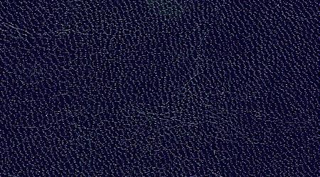 Castillian Navy