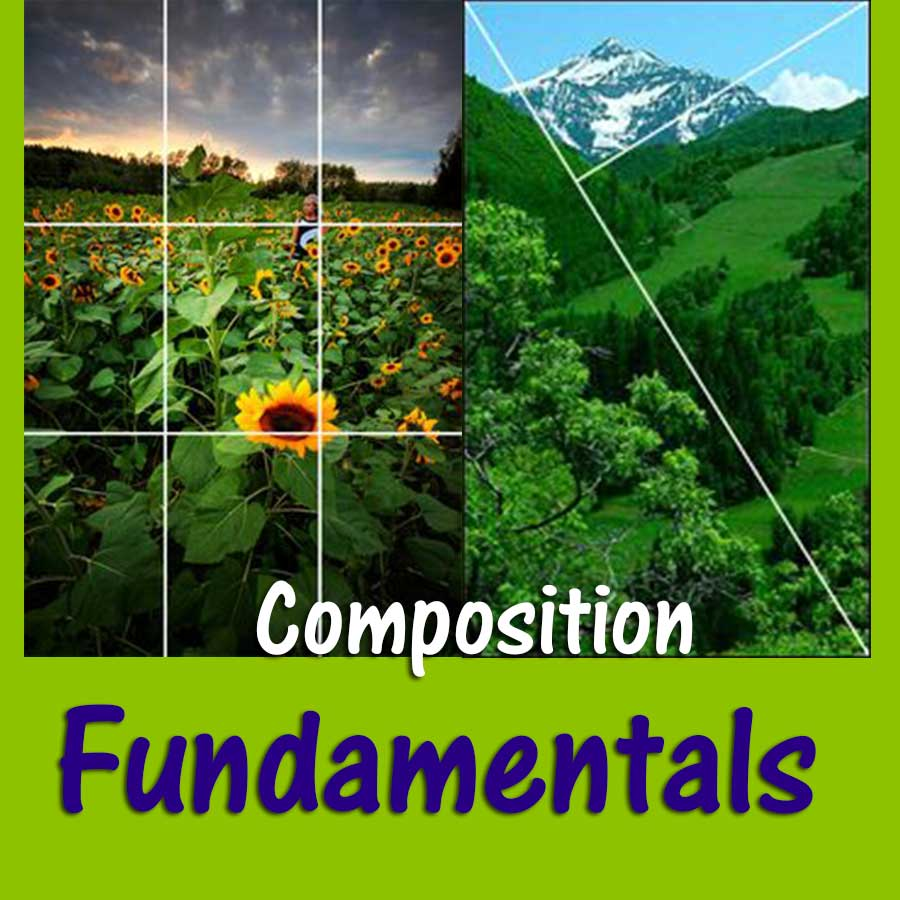 f-composition.jpg