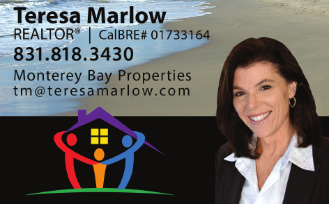 Teresa Marlow Ad - png - cropped 1.png