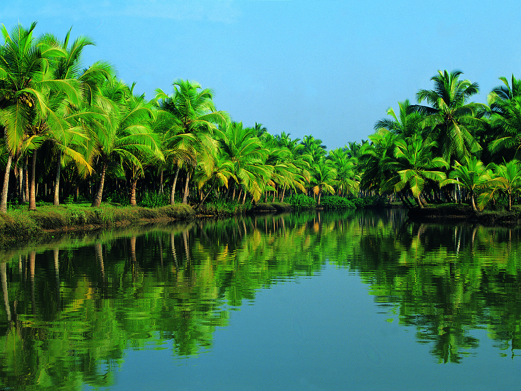 Kerala river scene.  http://www.incredibleindia.org.in/kerala-backwaters/
