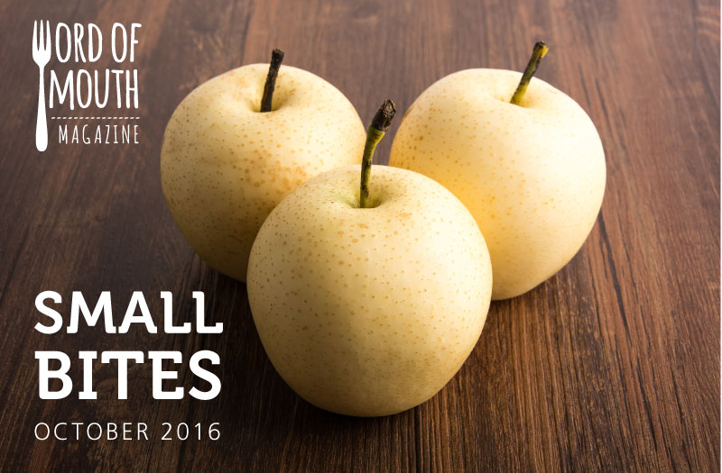 October 2016 Small Bites for Word of Mouth magazine