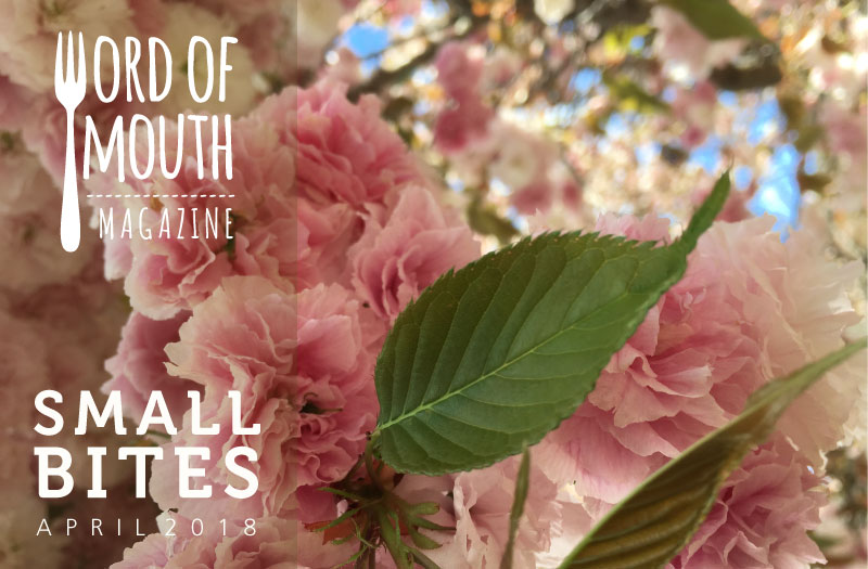 April 2018 Small Bites for Word of Mouth magazine